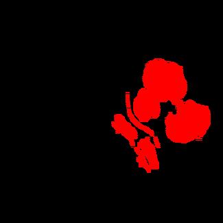 Region Badlands (Scorched Earth).png