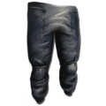 Hide Pants.png