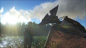 Tamed Pteranodon.jpg
