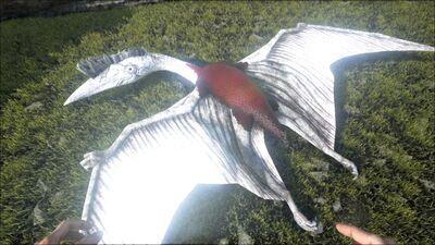 Quetzal PaintRegion5.jpg