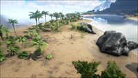 Biome Beach.jpg