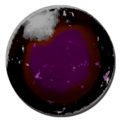 Mod ARK Additions Abyssal Xiphactinus Egg.png