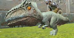 Chibi-Giganotosaurus in game.jpg
