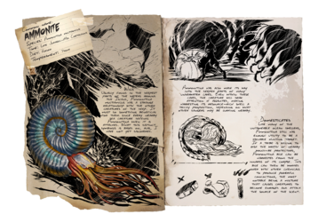 Dossier Ammonite.png