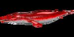 Basilosaurus PaintRegion0.png