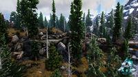 Glacius Boreal Forest.jpg