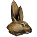 Procoptodon Bunny Costume.png