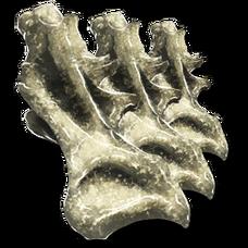 Sauropod Vertebra.png