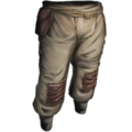 Cloth Pants.png
