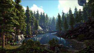 The Redwoods (Valguero).jpg