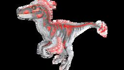 X-Raptor PaintRegion2.png