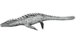 X-Mosasaurus PaintRegion2.png