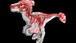 X-Raptor PaintRegion5.png