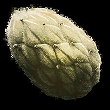 Plant Species Z Seed (Aberration).png