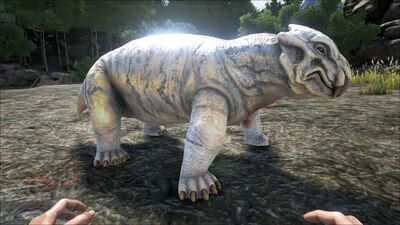 Lystrosaurus PaintRegion4.jpg