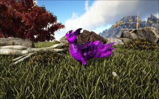 Mod Ark Eternal EVo Featherlight Image.jpg