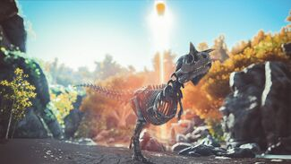 Skeletal Carnotaurus Image.jpg