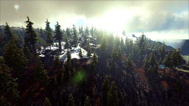 Light Redwoods (Ragnarok).jpg