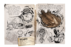 Dossier Trilobite.png