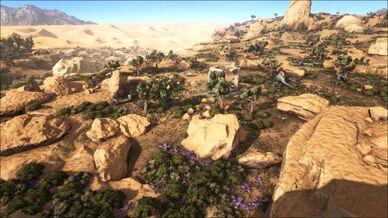 High Desert (Scorched Earth).jpg