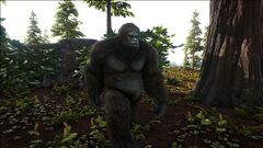 Gigantopithecus in the Redwood Forest.jpg