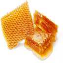 Honey (Primitive Plus).png