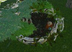 Deinonychus Nest.jpg