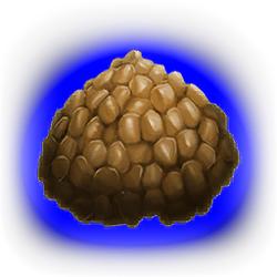 キブル(カルボネミスの卵)