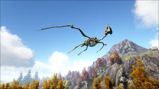 Skeletal Quetzal Image.jpg