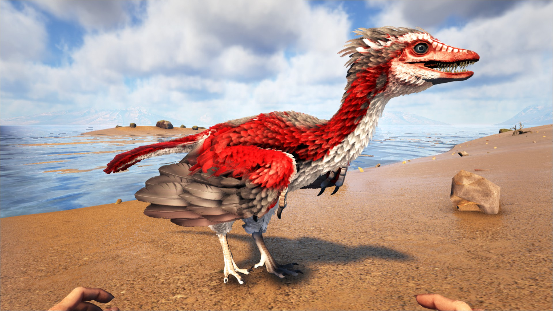 Archaeopteryx Official Ark Survival Evolved Wiki