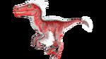 Raptor PaintRegion0.png