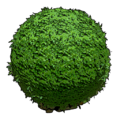 Round Hedge.png