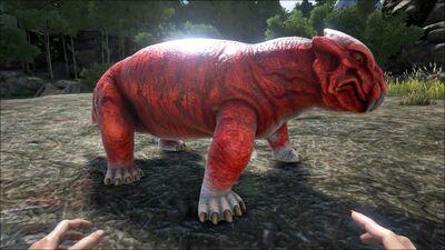 Lystrosaurus PaintRegion0.jpg