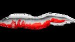 Electrophorus PaintRegion5.png