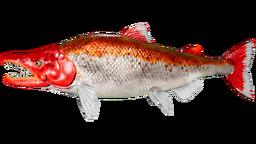 Sabertooth Salmon PaintRegion0.png