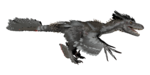 Deinonychus PaintRegion5.png