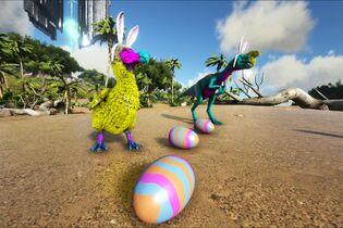 Bunny Image.jpg