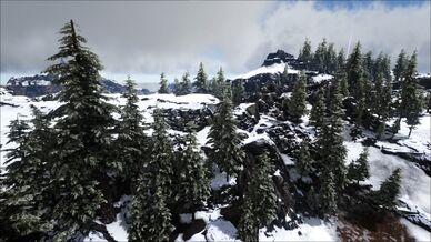 Snow Forest (Ragnarok).jpg