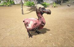 Zombie Dodo.jpg