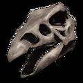 Stego Bone Costume.png