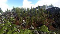 Wyvern Forests (Ragnarok).jpg