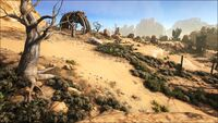 Low Desert (Scorched Earth).jpg