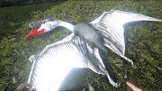 Quetzal PaintRegion4.jpg