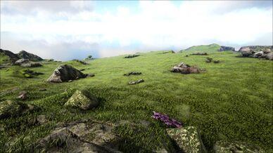 Upper Highlands (Ragnarok).jpg