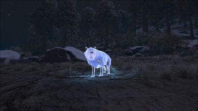 Direwolf Ghost Image.jpg
