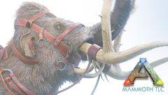 Mammoth TLC 2.jpg