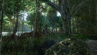 Urwald Swamp (Valguero).jpg