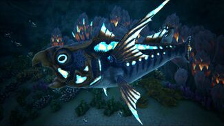 Parakeet Fish School Image.jpg