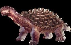Render Turtle.png