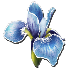 Rare Flower.png